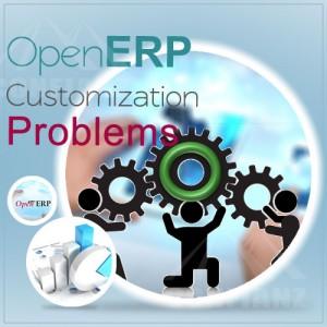 ERP CUSTOMIZATION ISSUES
