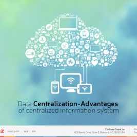 Data Centralization-Advantages of centralized information system